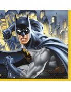 16 tovaglioli di carta Batman™