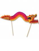 Stecchini decorativi con dragone