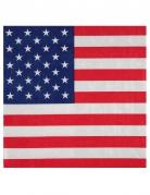 20 tovaglioli di carta USA