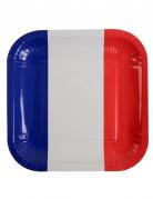 10 piatti quadrati in cartone bandiera Francia 23 cm