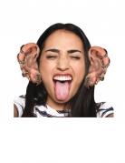10 paia di orecchie giganti in cartone