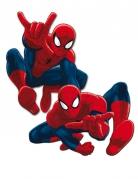 2 decorazioni per parete Spiderman™