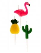 6 candeline fenicottero ananas e cactus
