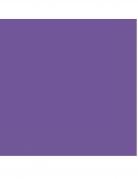 20 tovaglioli in carta color viola