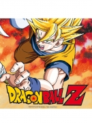 20 tovaglioli di carta Dragon Ball Z™