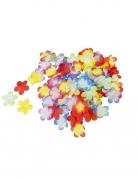 300 fiori hawaiani decorativi