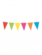 Ghirlanda con mini bandierine multicolor