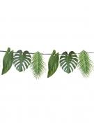 Ghirlanda in cartone con foglie tropicali verdi