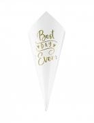 10 coni di carta bianca best day ever