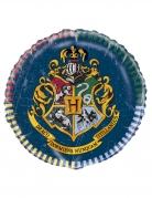 Palloncino alluminio Harry Potter™
