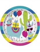 8 piatti in cartone lama multicolor 23 cm