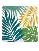 8 piatti quadrati in cartone tropical chic 18 cm