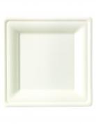 10 maxi piatti bianchi in fibra di canna 26 cm