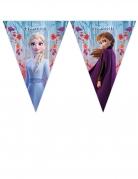 Ghirlanda di bandierine Frozen 2™