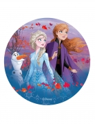 Disco in ostia principesse e Olaf Frozen 2™